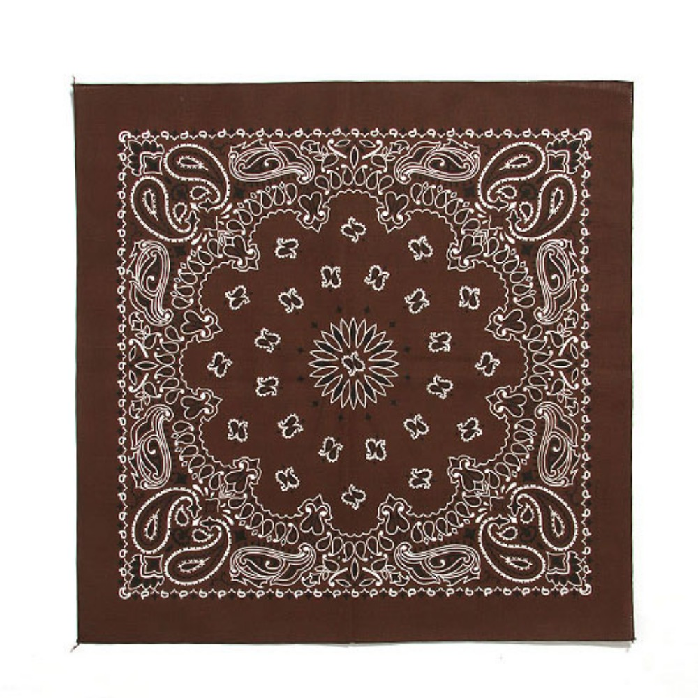 HAV A HANK Traditional Paisleys Bandana Cocoa