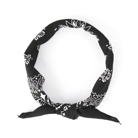 HAV A HANK Traditional Paisleys Bandana Black